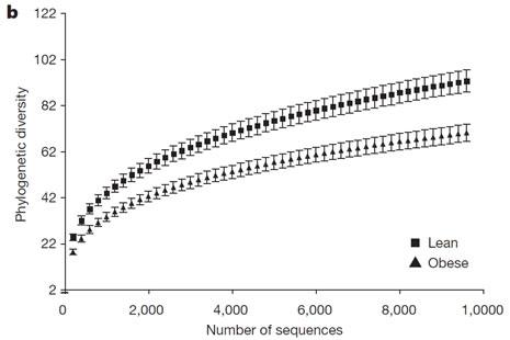 16s宏基因组测序步骤