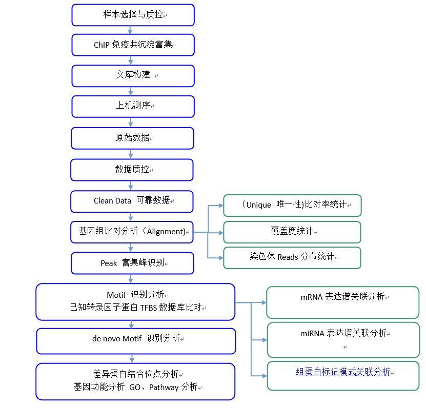 研究内容: 一、标准信息分析 1.去接头污染,去低质量reads和产量情况统计 2. ChIP测序序列与参考基因组序列的比对 3. ChIP测序唯一reads在全基因组的分布 4.统计ChIP测序数据富集区域(Peak)的信息 5. Peak相关基因筛选与GO功能聚类分析、Pathway分析 6.多个样品间的定量差异分析 7.